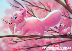 #2695. Flowering Apricat - Word Play
