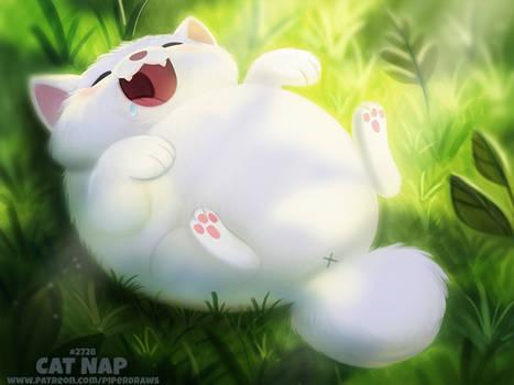 #2728. Cat Nap - Word Play