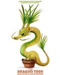 #2761. Dragon Tree - Word Play