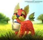 #2777. Yorkshire Berrier - Word Play