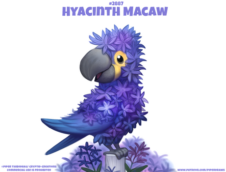 #2887. Hyacinth Macaw - Word Play