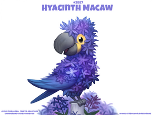 #2887. Hyacinth Macaw - Word Play