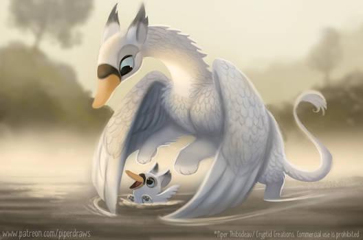 #2943. Griffon Swan - Illustration
