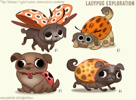 #2960. Ladypug - Exploration Sketches
