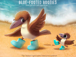 #2970. Blue-footed Booties - Word Play