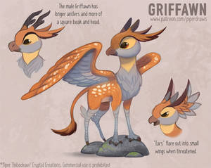 2996. Griffawn - Final Design
