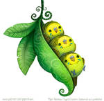 3023. Parakeet Pod - Illustration