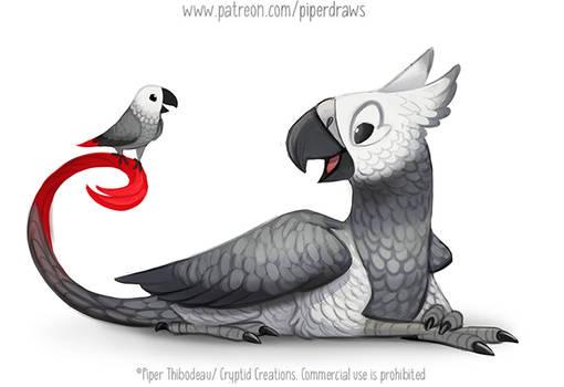 3036. African Grey Griffon - Illustration