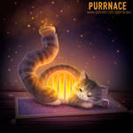 3049. Purrnace - Word Play