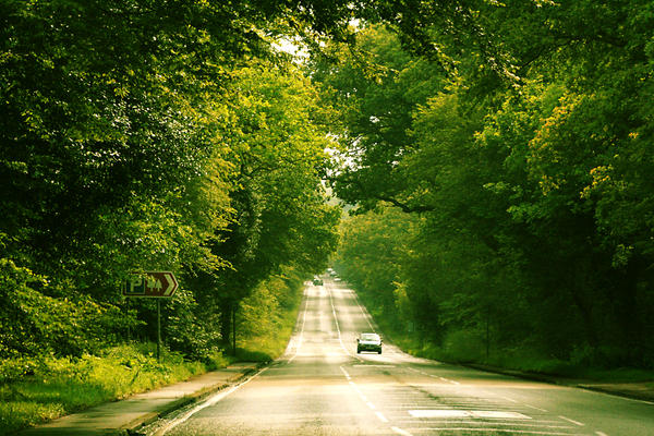Long road by cherrypieman