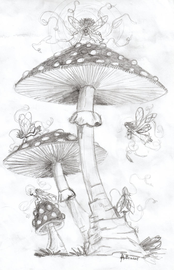 mushroom faeries by dragon of the arts on deviantart