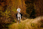 An Autumn Ride