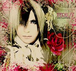 """Obrázek """"http://fc07.deviantart.com/fs24/f/2008/008/6/9/Versailles_Teru_by_vampirekid_hikaru.jpg"""" nelze zobrazit, protože obsahuje chyby."""