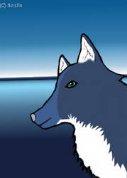 Wolf and Ocean by Kamaji16