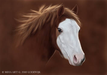White Face Poown Lodewijk