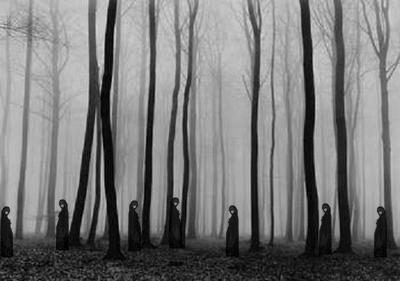 Witches in the wood
