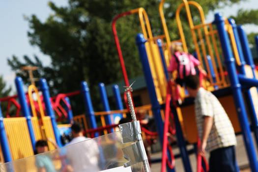 Dragonfly Playground