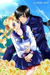 Usagi and Seiya