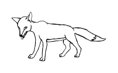 First fox drawing