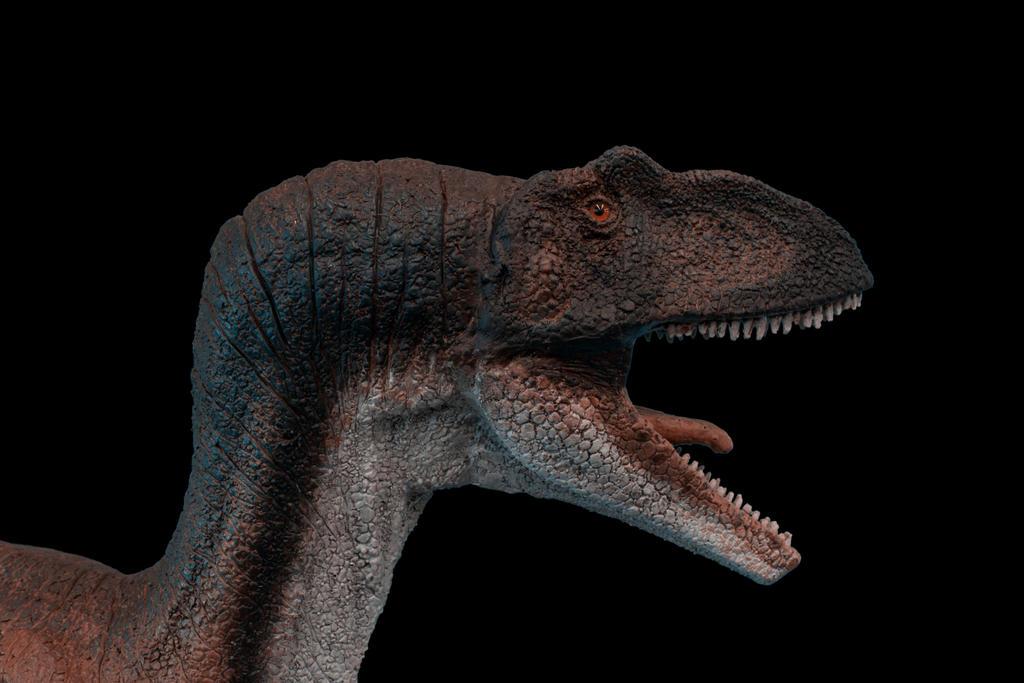 allosaurus detail3 by Ladymedusa218