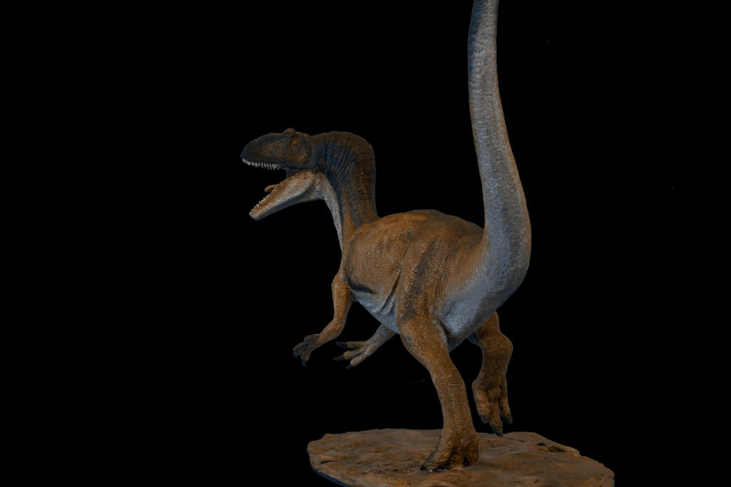 allosaurus rear view by Ladymedusa218