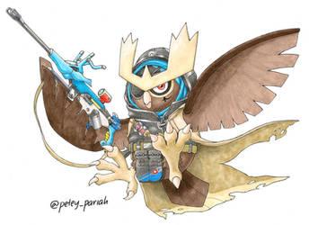 Pokemon X Overwatch: Noctowl X Ana by PeteyPariah