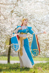 Zelda - Breath of the Wild by Shappi