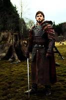The Mercenary2 by altair333
