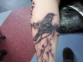 tui tattoo by phoenixtattoos