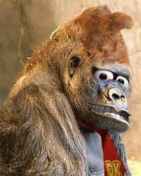 Donkey Kong by fallenintoshadows