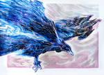 Bird Flow