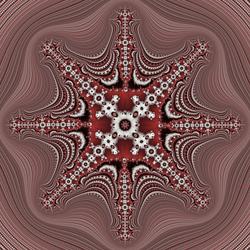 Cross Complex