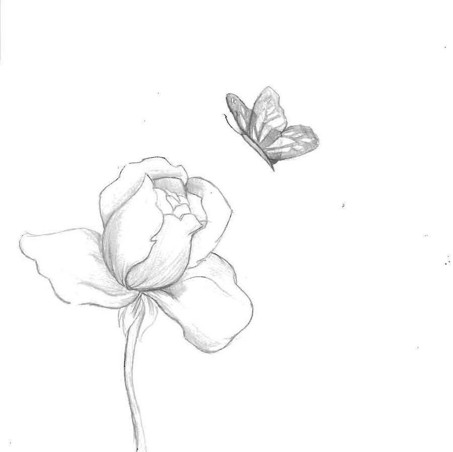 Rose n Butterfly by LuzyMew on deviantART