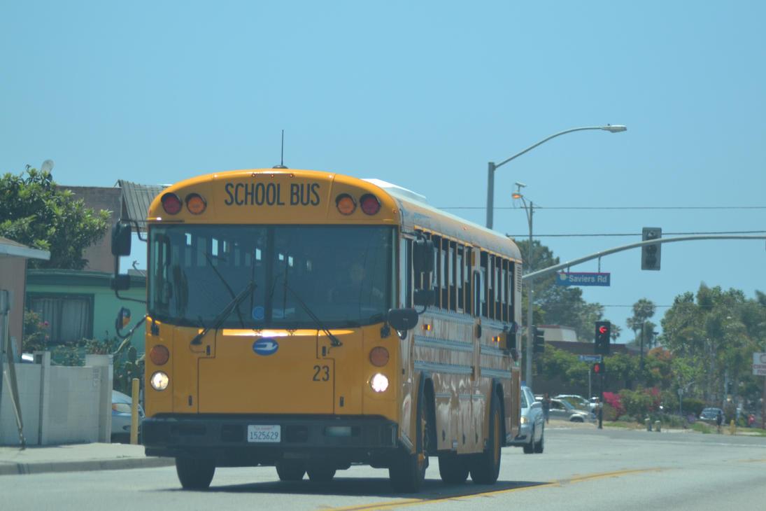 bluebird flat face school bus by Supercooper17