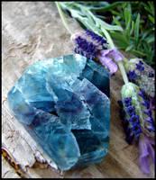 Rainbow Fluorite - in my lavender garden by andromeda