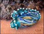 Jewel of Atlantis - Seashell Glass Bead