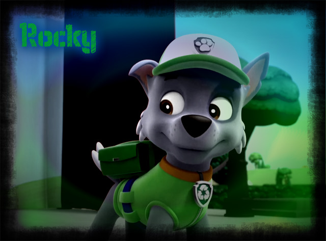 Rocky Wallpaper By Bagel Beagle D99ut1t PawPatrolChase