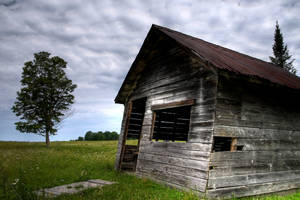 The Old Shed by joeross