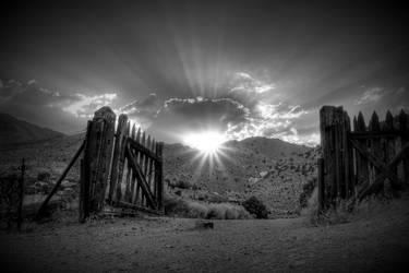 unknown by joeross