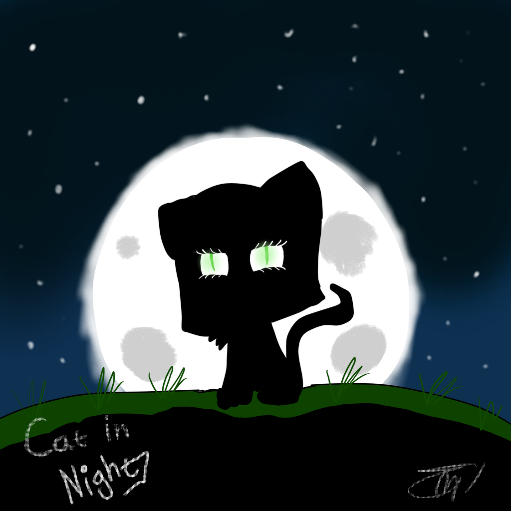 Cat in night by MikaMilaCat