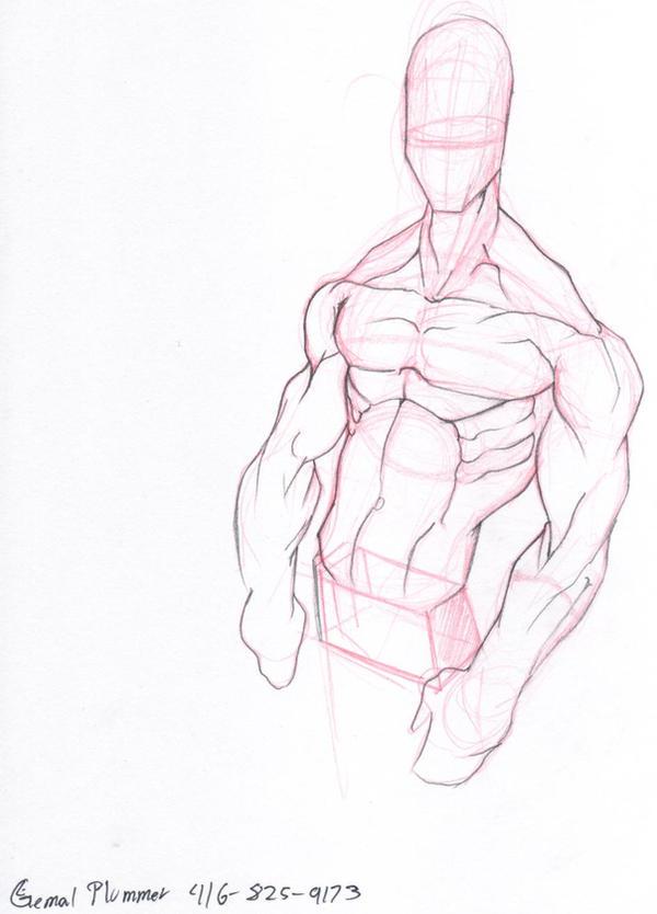 anatomy by g67