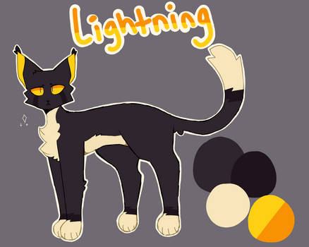 lightning reference sheet