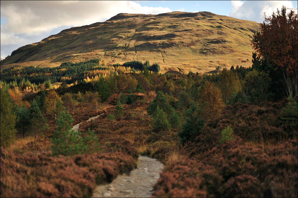 The West Highland Way Towards Tyndrum by tamaskatai