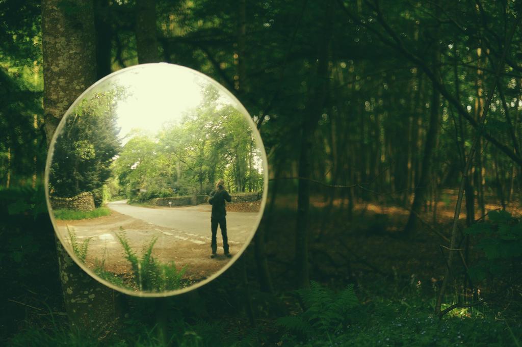 Woodland Mirror by tamaskatai