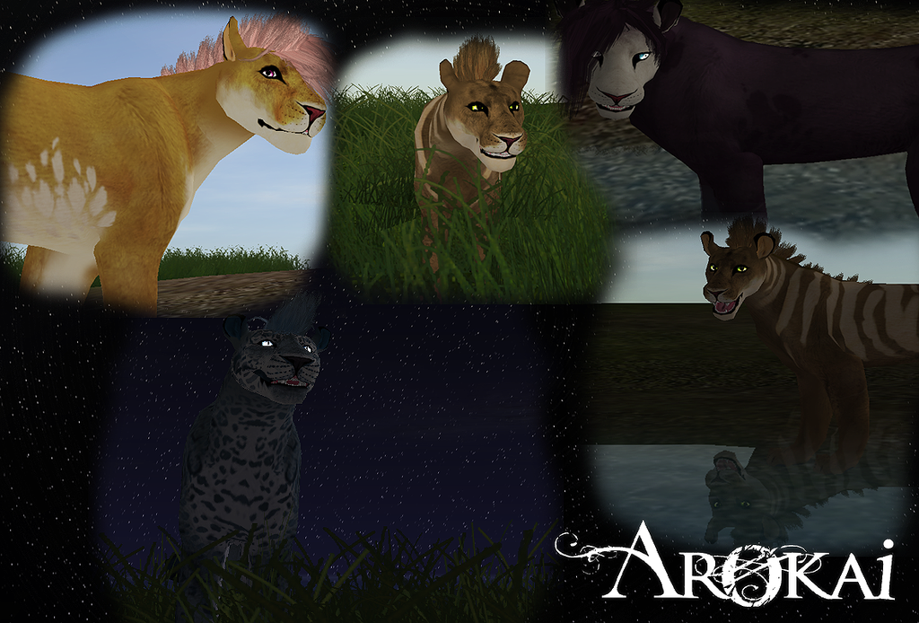 Arokai [canine creator v1. Out now. ] | the endless forest.