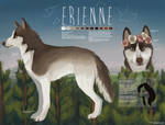 Erienne Reference 2013