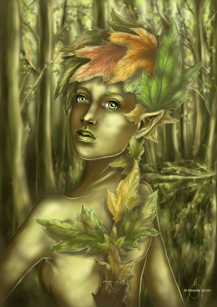 forest elf and the - photo #13