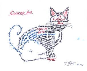 Czarny Kot - The Black Cat by JaBoJa