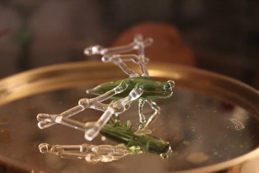 Szklany owad