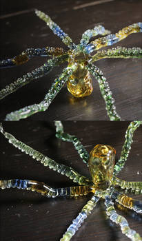 Glass octopus (tentacle side and head side)